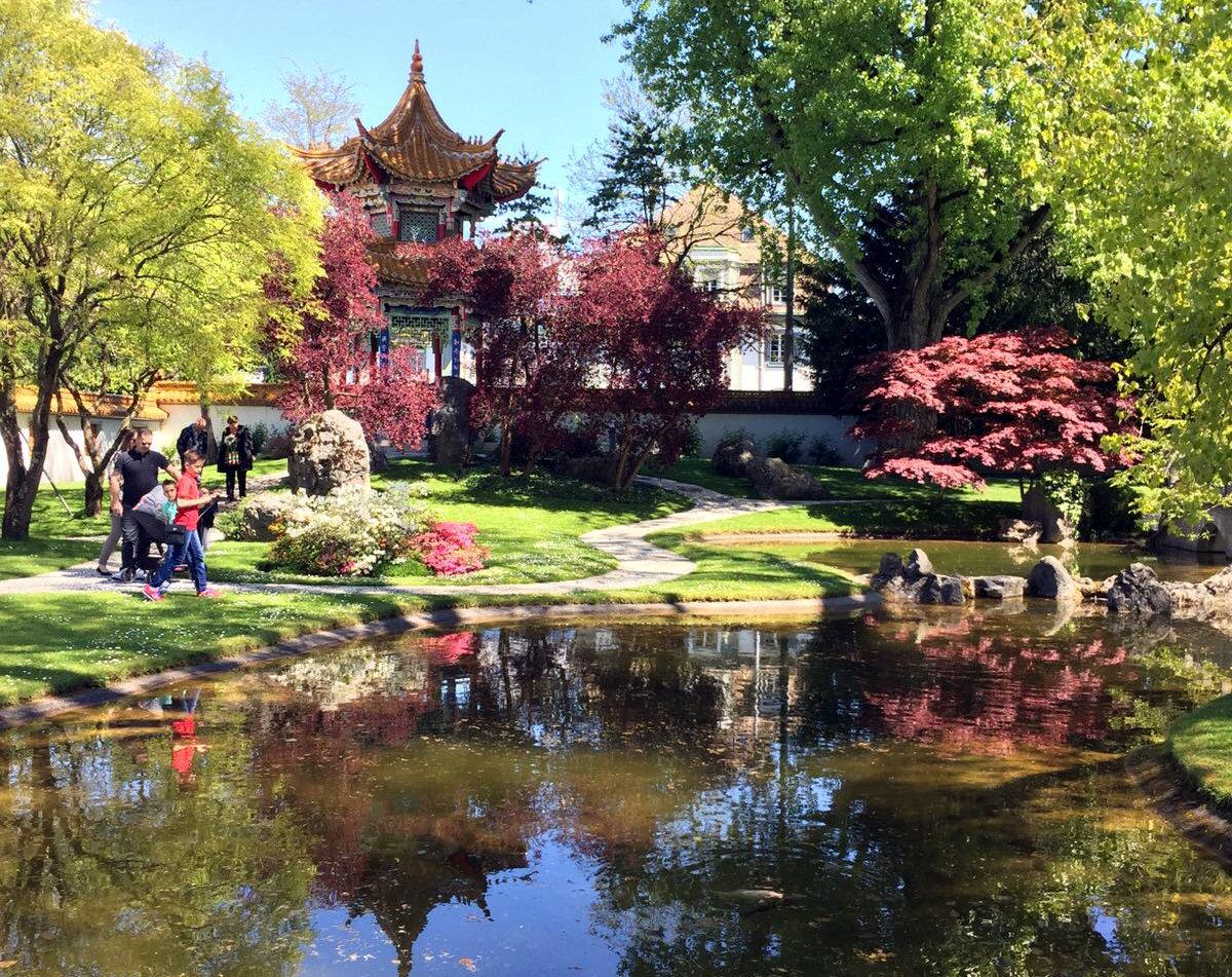 ogród chiński zurych szwajcaria iglawpodrozy