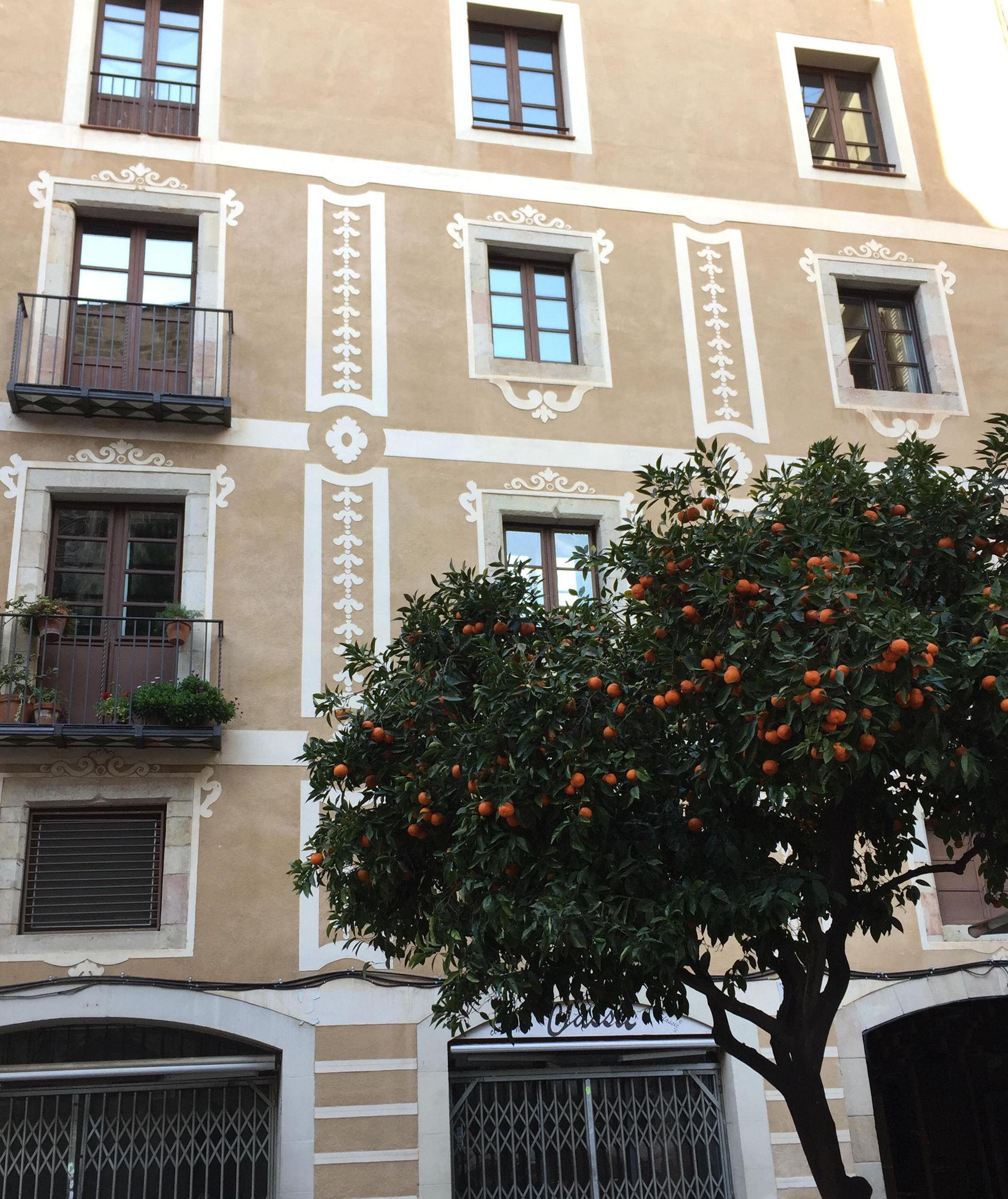 barcelona architektura budynki mandarynki iglawpodrozy