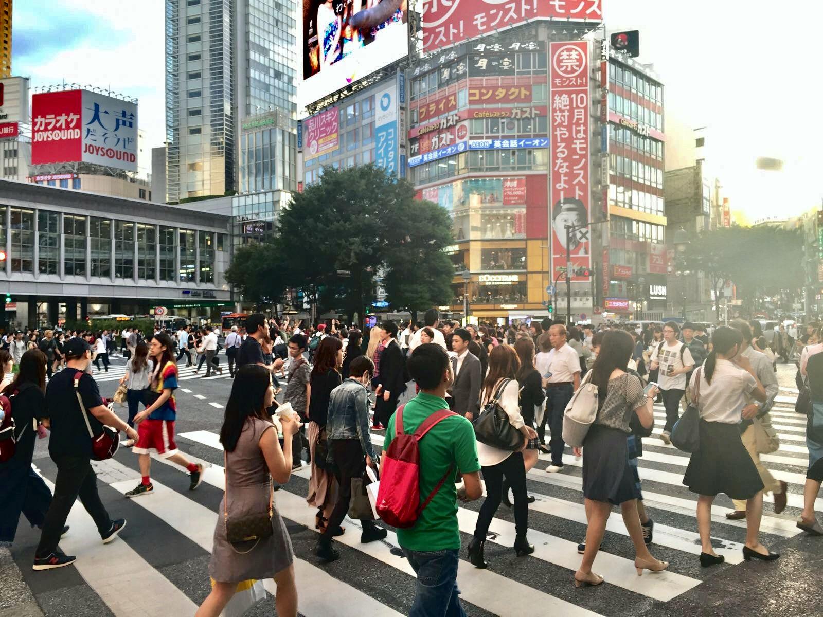 japonia tokio tokyo shibuya crossin skrzyżowanie
