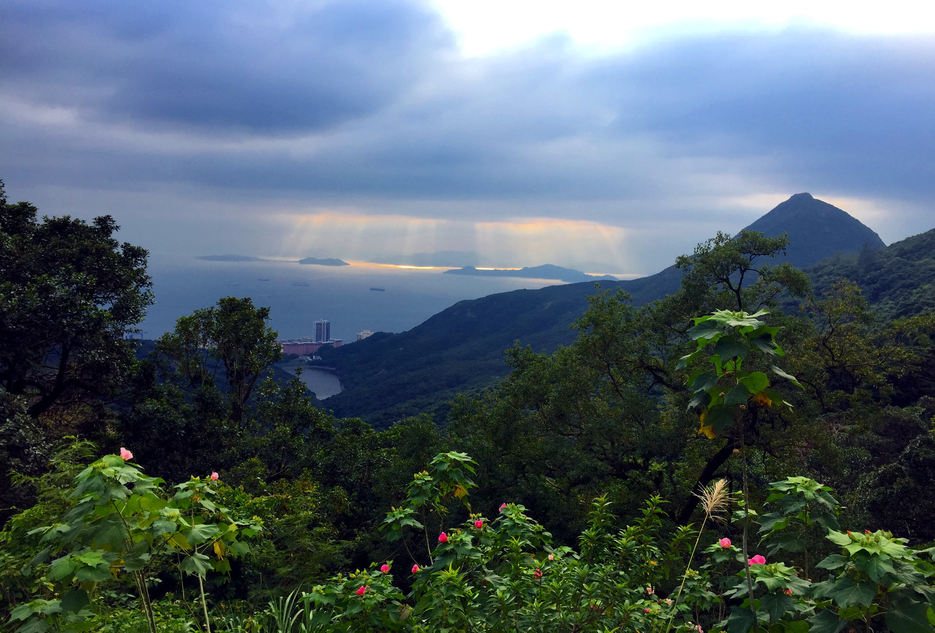 hongkong widok peek wzgorze wiktorii iglawpodrozy