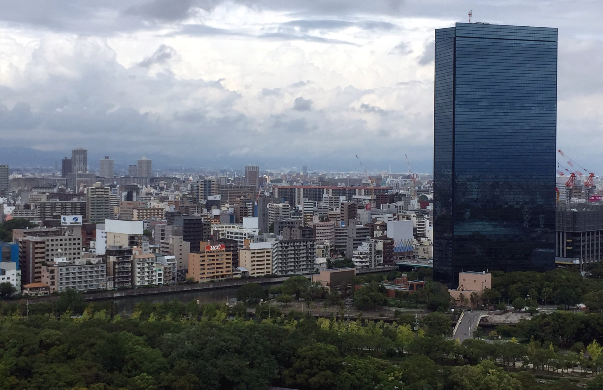 widok z Zamku Osaka iglawpodrozy