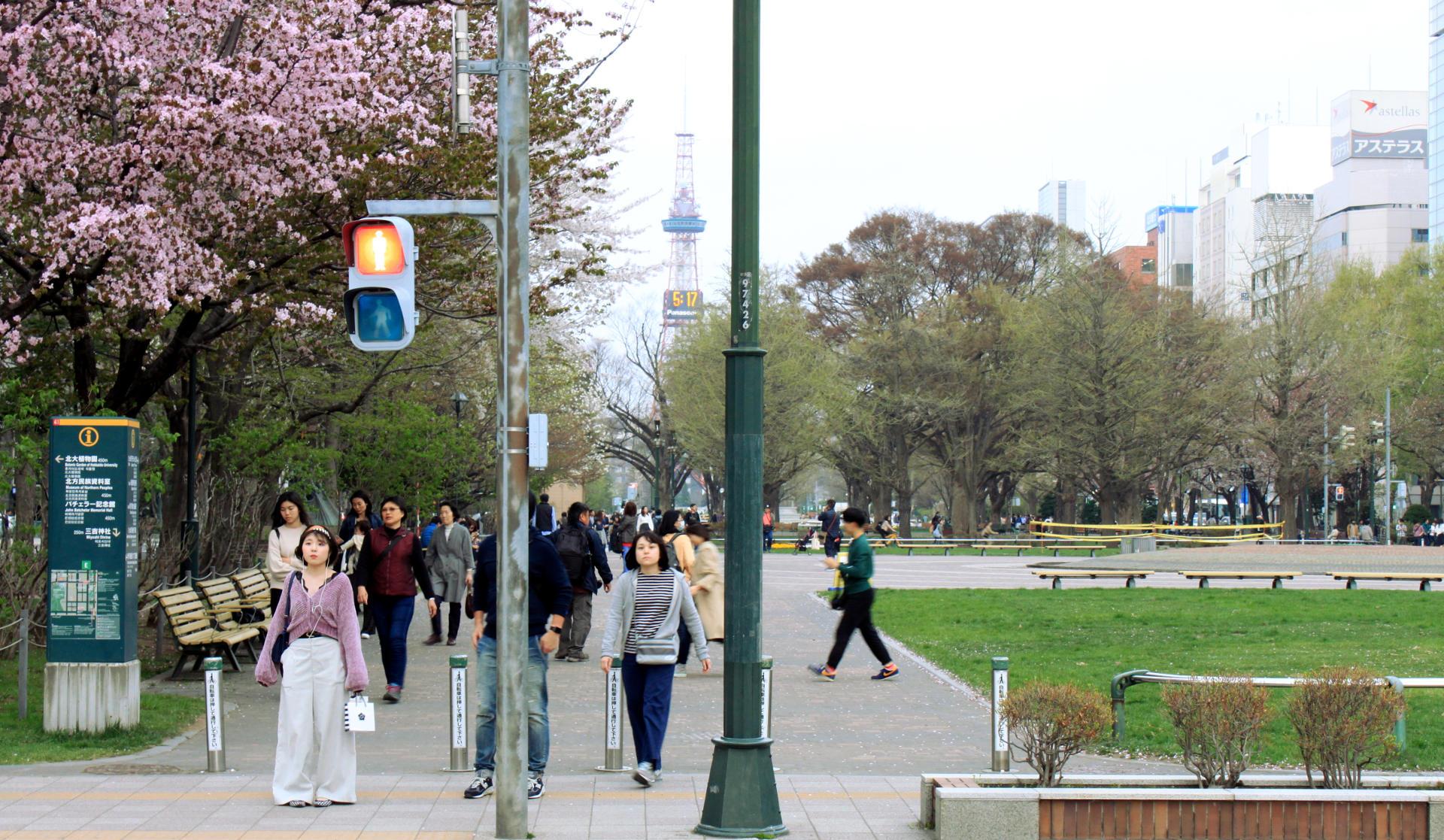 sapporo japonia japan hokkaido odoripark parksapporo iglawpodrozy