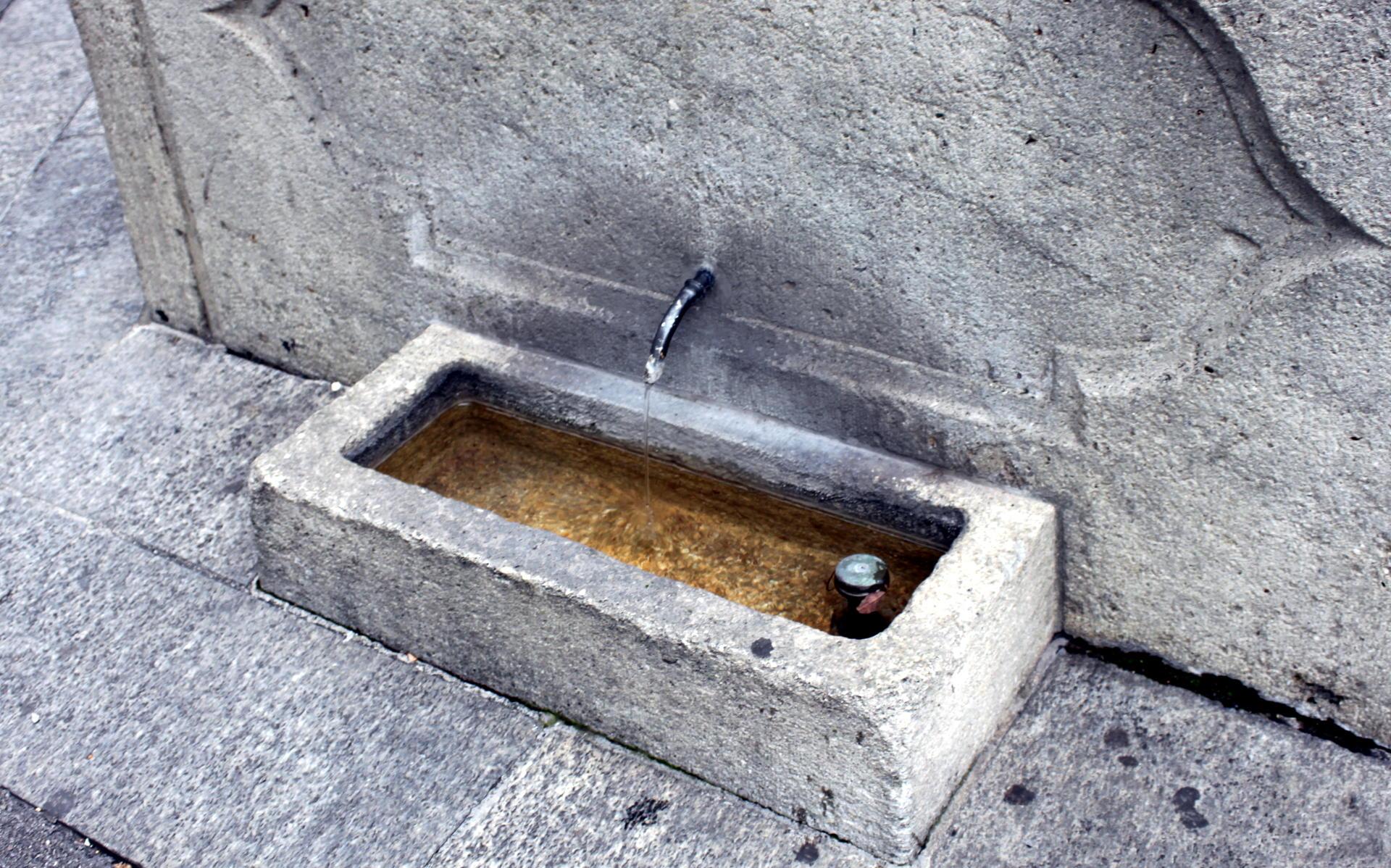 szwajcaria żródełka z wodą dla zwierząt iglawpodrozy