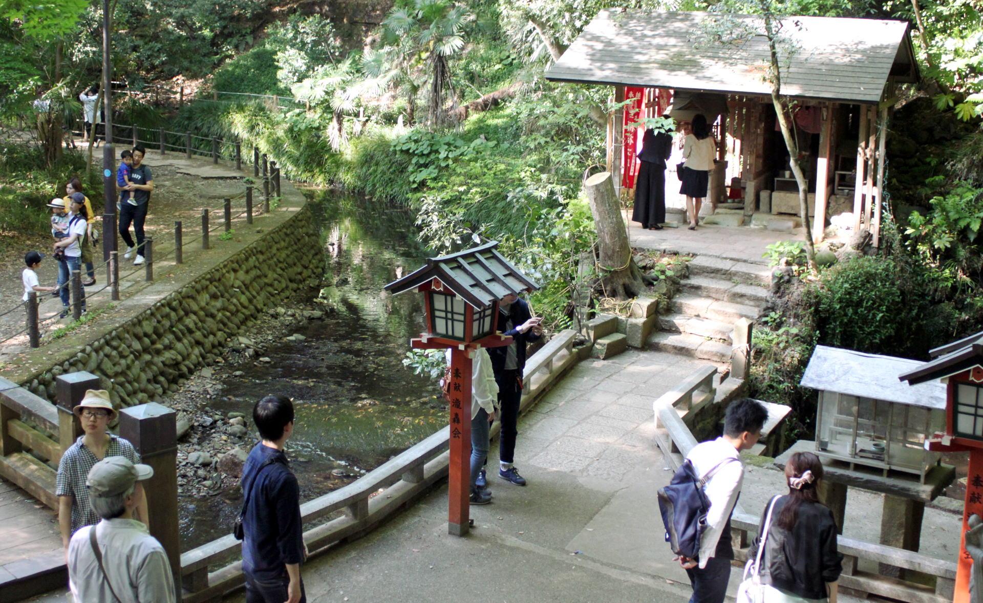 zielona dolina Todoroki w Tokio iglawpodrozy