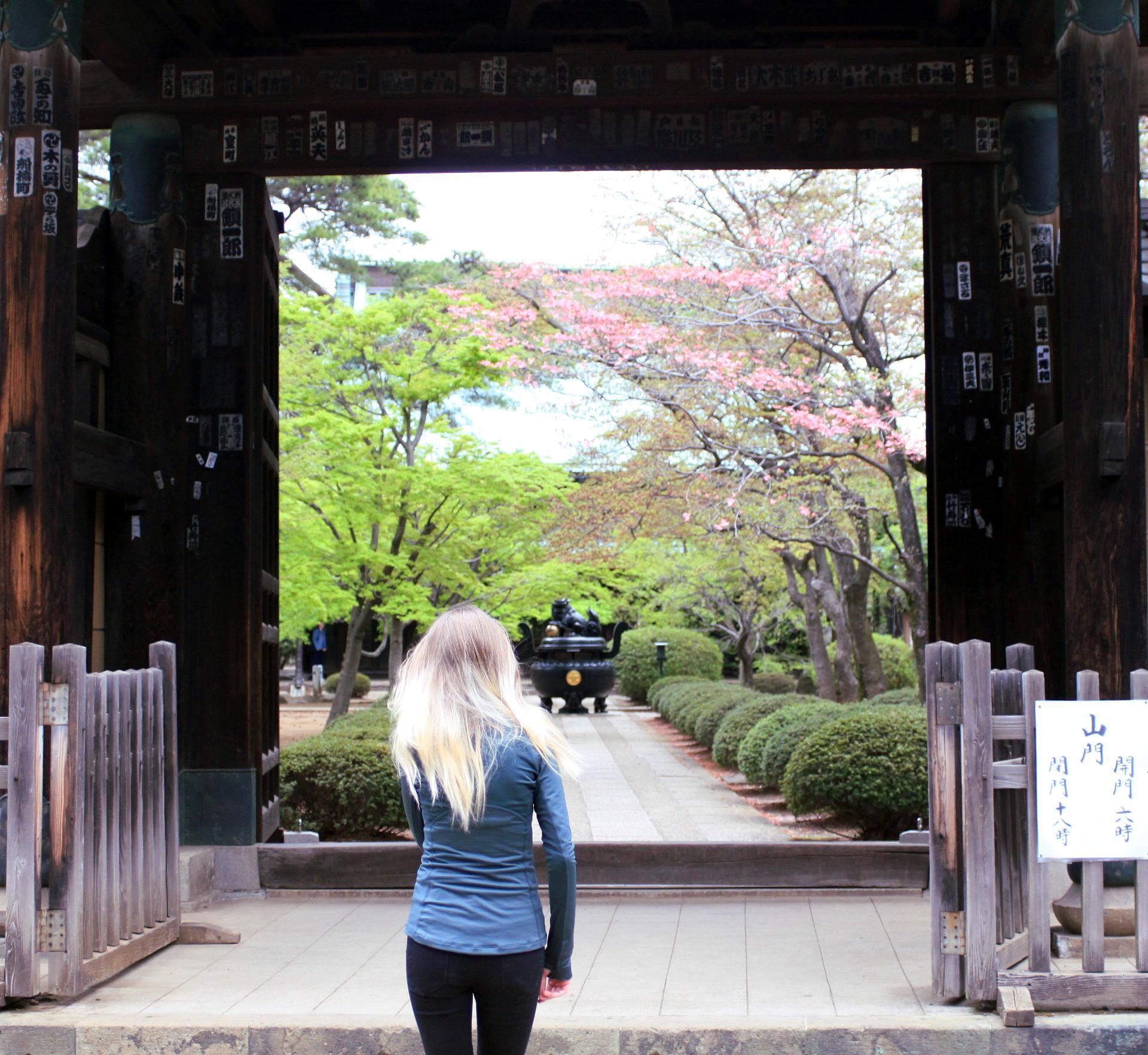 świątynia Gotokuji tokio iglawpodrozy