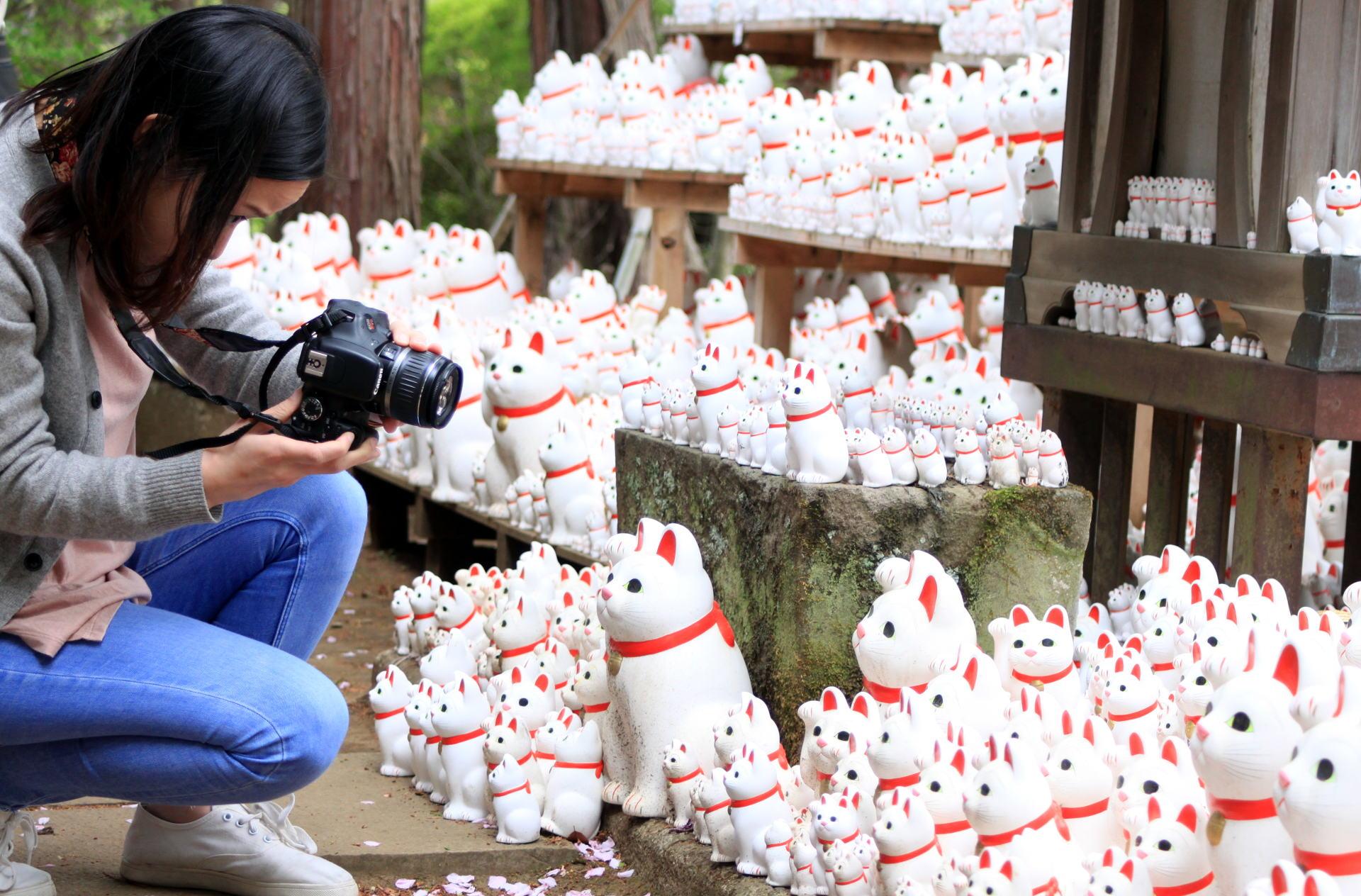 świątynia Gotokuji w Tokio, 'Szczęśliwy Kot' iglawpodrozy