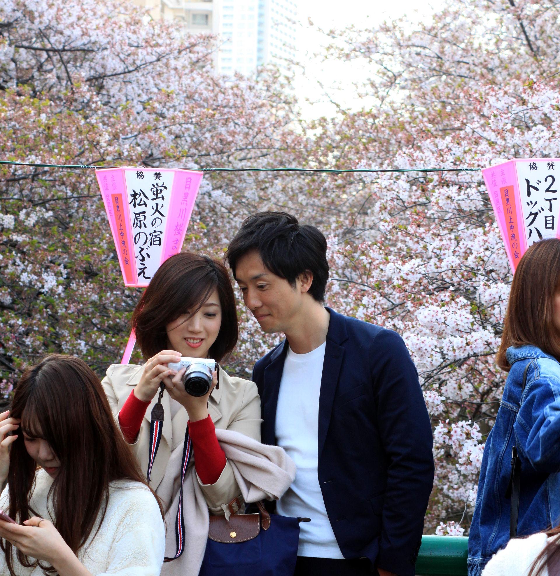 tokio japonia tokyo japan park kwitnacawisnia kwiaty hanami sakura wiosnawjaponii springinjapan cherryblossom iglawpodrozy