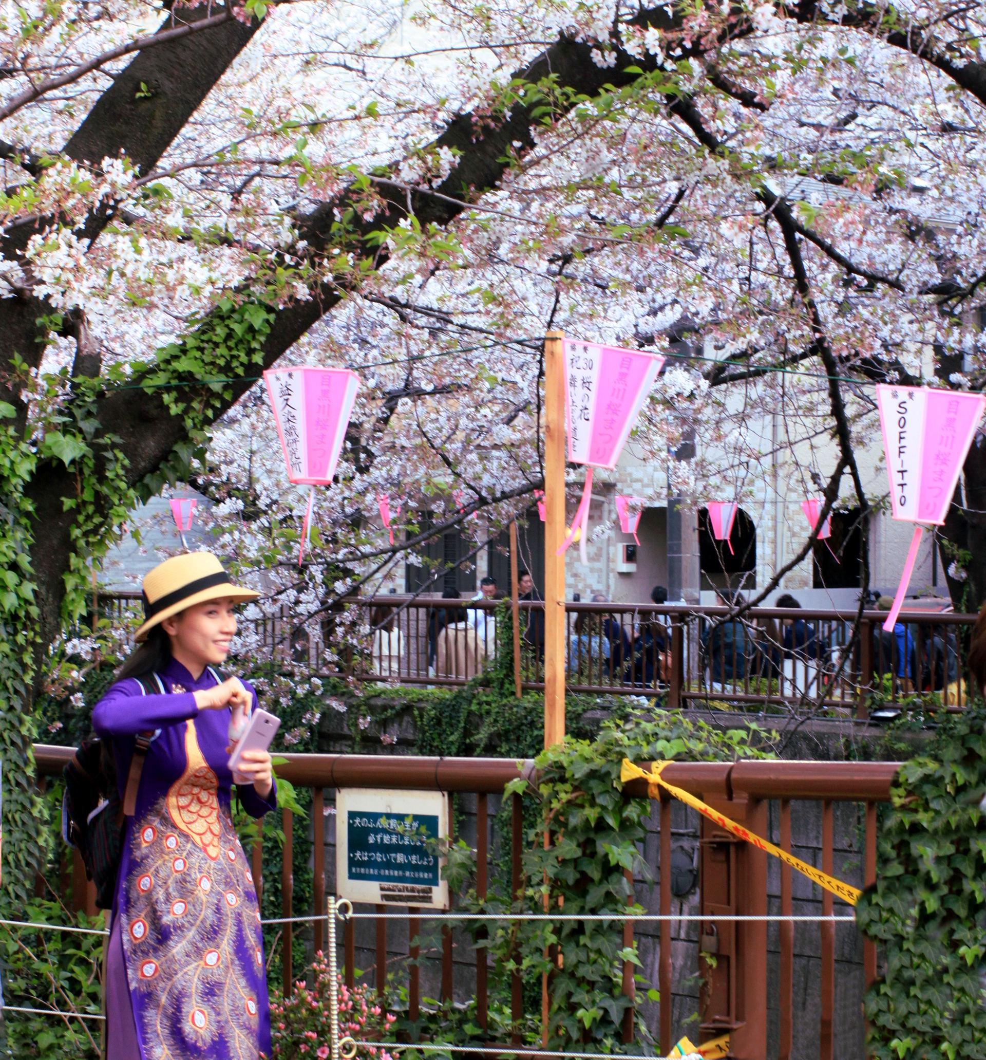 tokio japonia tokyo japan park kwitnacawisnia kwiaty cherryblossom hanami sakura springinjapan wiosnawjaponii iglawpodrozy japonka kimono