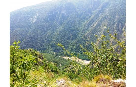 VILLETTA SINGOLA CON 6000 MQ DI TERRENO IN ZONA PANORAMICA - Foto 1 di 18