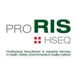 proRIS Consultants GmbH