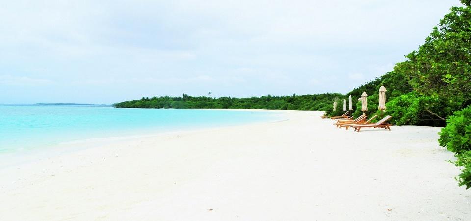 the barefoot Resort Maldive