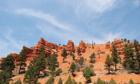 Red Canyon Zion Park