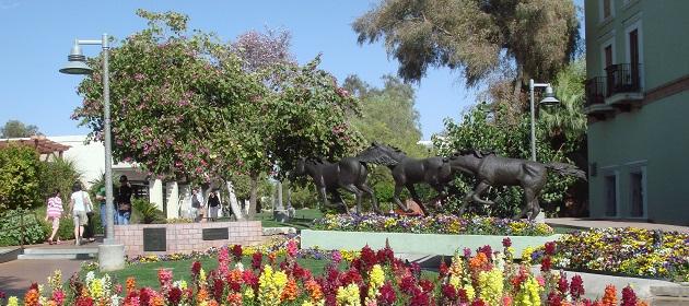 Scottsdale - USA - Tour 21 giorni arrivo a Phoenix e ritorno da New York