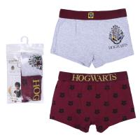 PACK SOUS-VÊTEMENTS 2 PIEZAS HARRY POTTER