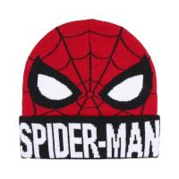HAT WITH APPLICATIONS SPIDERMAN