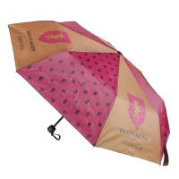 PARAPLUIE PLIAGE MANUEL HARRY POTTER 1