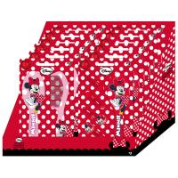 CEPILLOS DISPLAY MINNIE