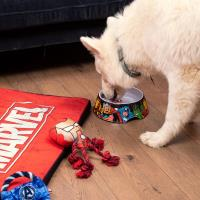 DOGS BOWLS  M MARVEL 10