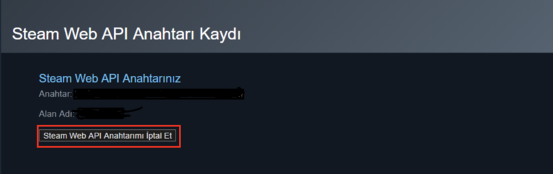 steam web api key nasil kapatilir