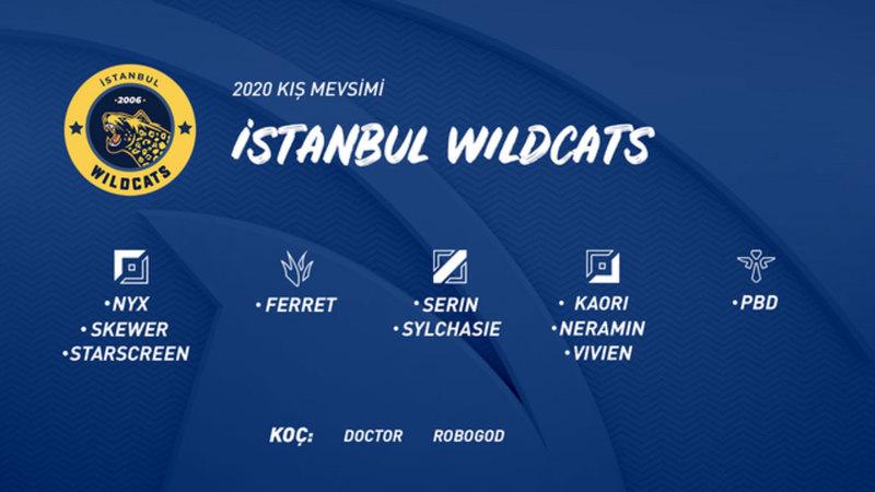 istanbul wildcats