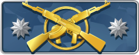 CSGO Master Guardian Elite