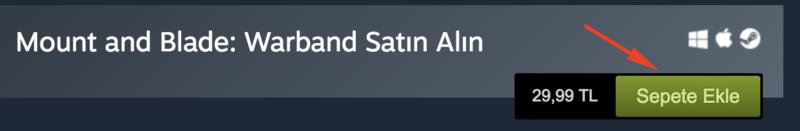 Steam oyun satin alma 1