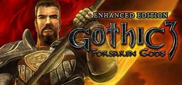 Gothic 3 Forsaken Gods Enhanced Edition - Steam
