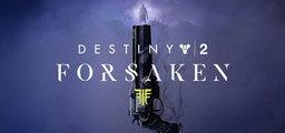 Destiny 2 Forsaken Standard Edition