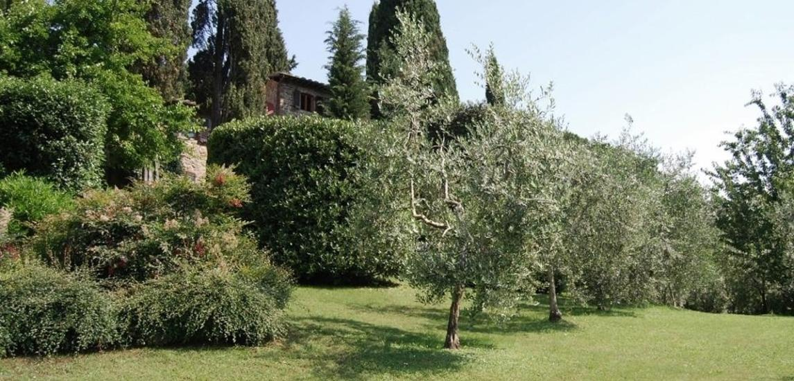 1429772670664_via_petriolo_greve_in_chianti.jpeg