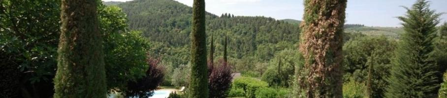 1429736922351_via_petriolo_greve_in_chianti.jpeg