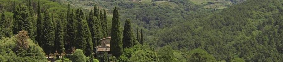1435315337675_petriolo_greve_in_chianti.jpeg