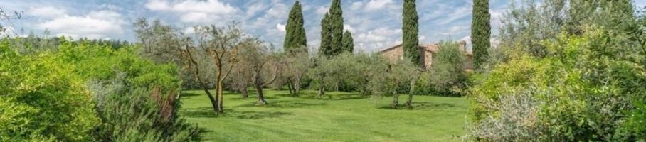 1543425770375_chianti_area_greve_in_chianti.jpeg