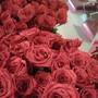 Салон красоты Розовая пантера