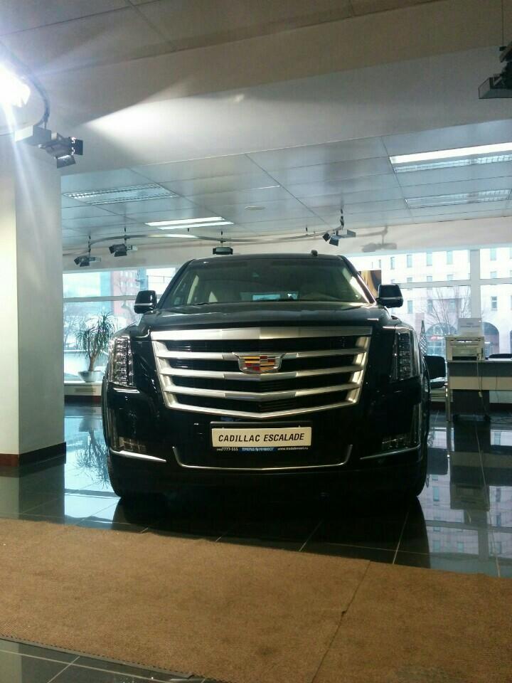 Москва автосалон трейдинвест форд экоспорт автосалон в москве