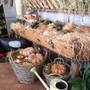 Служба доставки готовых блюд FermA