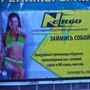 Спортивно-оздоровительный клуб N-ergo