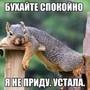 фото Гостиничный комплекс Новые Горки 11