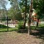 Детский сад №451 Теремок