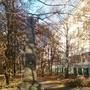 Научно-исследовательский институт Ярсинтез