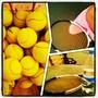 Теннисная секция Андреевский