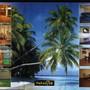 Сауна Paradise