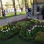 СтГМУ Ставропольский государственный медицинский университет