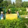 Детский сад №27 Дружная семейка