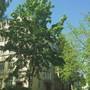 Центр психолого-педагогической реабилитации и коррекции Рублёво