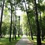 Центр дополнительного образования Черкизовский парк