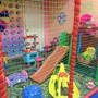 Детский центр Непоседа