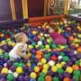 Детский развлекательный центр Маугли