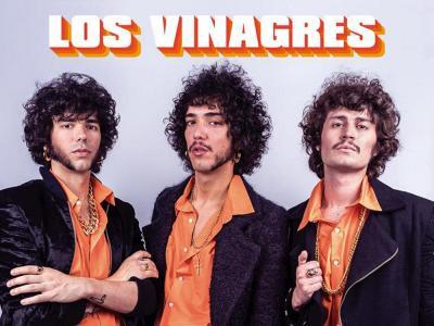 Los Vinagres