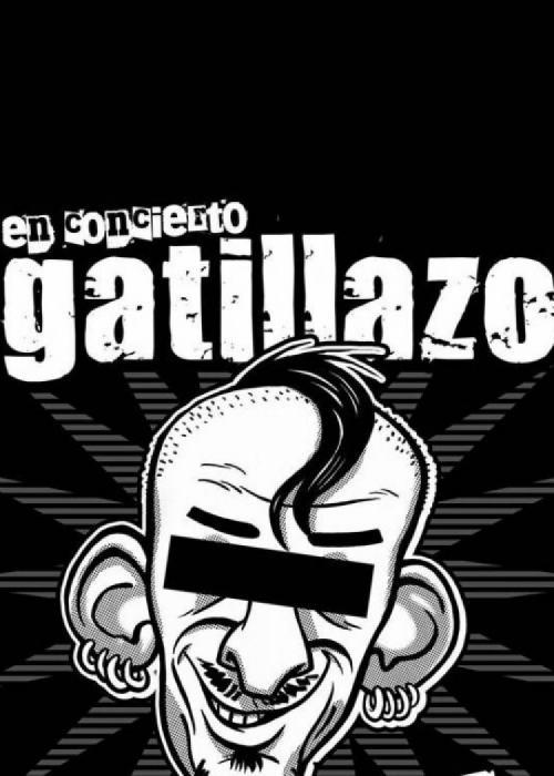 Cartel de Concierto de Gatillazo en Granada