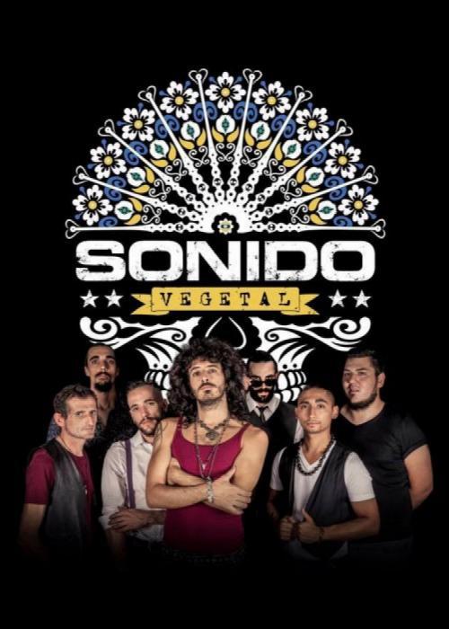 Cartel de Concierto de Sonido Vegetal en Granada